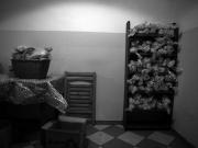 czarno-biale-na-wystawe_022
